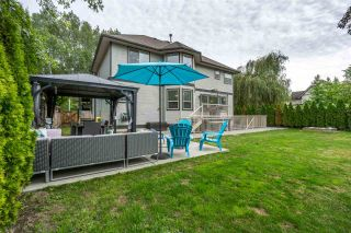 Photo 19: 5137 224 Street in Langley: Murrayville House for sale : MLS®# R2252664