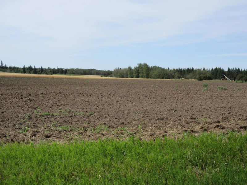 FEATURED LISTING: 55516 RR 241 Rural Sturgeon County