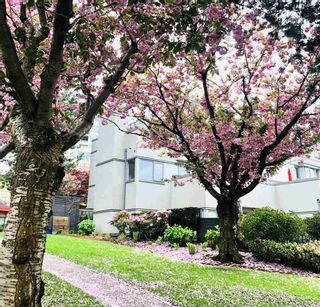 """Photo 27: 1351 W 8TH Avenue in Vancouver: Fairview VW Townhouse for sale in """"FAIRVIEW VILLAGE"""" (Vancouver West)  : MLS®# R2578868"""