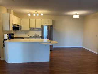 Photo 13: 32 1332 Edenwold Heights NW in Calgary: Edgemont Apartment for sale : MLS®# A1120345