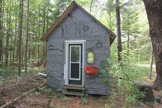 Photo 11: 300 Pinery Road in Kawartha Lakes: Rural Somerville Property for sale : MLS®# X4840235