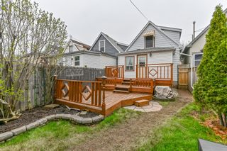 Photo 33: 93 Newlands Avenue in Hamilton: House for sale