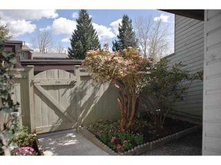 Photo 10: 2672 KINGSFORD Avenue in Burnaby: Montecito Townhouse for sale (Burnaby North)  : MLS®# V820406