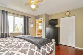 Photo 12: 20091 WANSTEAD Street in Maple Ridge: Southwest Maple Ridge House for sale : MLS®# R2545243