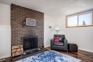 Photo 19: 36 Bermuda Way NW in Calgary: Beddington Heights Detached for sale : MLS®# A1111747