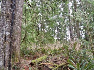Photo 21: W1/2 SW&NW1/4 Quatsino Sound in : NI Port Hardy Land for sale (North Island)  : MLS®# 866764