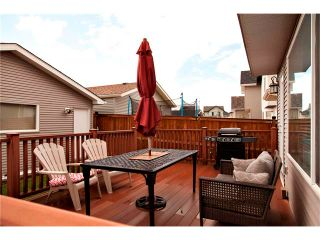 Photo 20: 270 CRANBERRY Close SE in Calgary: Cranston House for sale : MLS®# C4022802