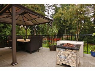 """Photo 16: 4530 197A ST in Langley: Langley City House for sale in """"Hunter Park"""" : MLS®# F1323380"""