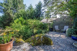 Photo 40: 4035 Saanich Rd in VICTORIA: SE High Quadra House for sale (Saanich East)  : MLS®# 793152