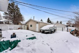 Photo 33: 3140 Blakiston Drive NW in Calgary: Brentwood Detached for sale : MLS®# A1071315