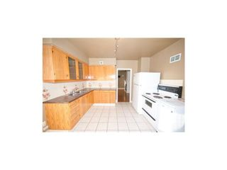 Photo 7: 7728 Bowness Road NW in Calgary: Bowness Detached for sale : MLS®# A1053017
