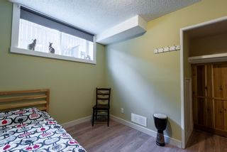 Photo 41: 3137 Doverville Crescent SE in Calgary: Dover Semi Detached for sale : MLS®# A1050547
