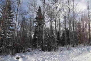 "Photo 18: 1 3000 DAHLIE Road in Smithers: Smithers - Rural Land for sale in ""Mountain Gateway Estates"" (Smithers And Area (Zone 54))  : MLS®# R2280132"