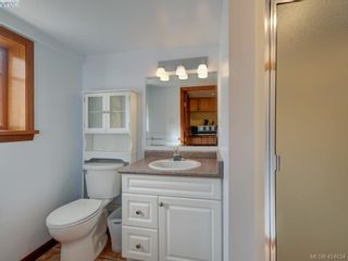 Photo 19: 1632 Hollywood Cres in VICTORIA: Vi Fairfield East House for sale (Victoria)  : MLS®# 837453