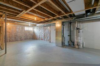 Photo 39: 209 Auburn Meadows Place SE in Calgary: Auburn Bay Semi Detached for sale : MLS®# A1072068