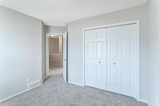 Photo 20: 271 Prestwick Acres Lane SE in Calgary: McKenzie Towne Row/Townhouse for sale : MLS®# A1142017