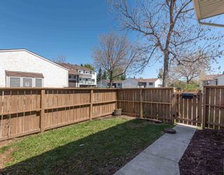Photo 4: 521 WILLOW Court in Edmonton: Zone 20 Townhouse for sale : MLS®# E4245583