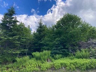 FEATURED LISTING: Lot 102 Point Road Clam Bay
