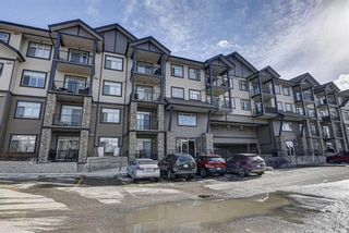 Photo 33: 419 117 Copperpond Common SE in Calgary: Copperfield Apartment for sale : MLS®# A1085904