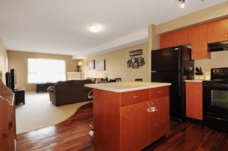 """Photo 5: 301 5465 203RD Street in Langley: Langley City Condo for sale in """"STATION 54"""" : MLS®# F1436316"""
