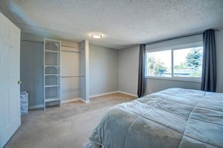 Photo 17: 20 MCKENNA Mews SE in Calgary: McKenzie Lake Detached for sale : MLS®# C4305584