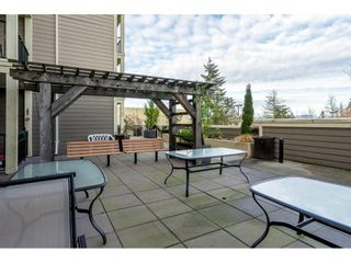 """Photo 26: 326 22323 48 Avenue in Langley: Murrayville Condo for sale in """"Avalon Gardens"""" : MLS®# R2501456"""