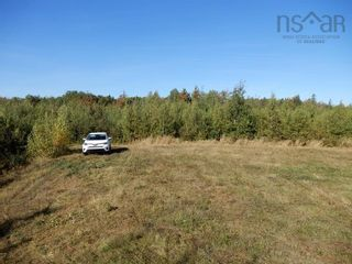 Photo 5: 40+/- acres Old Pictou Road in Hedgeville: 108-Rural Pictou County Vacant Land for sale (Northern Region)  : MLS®# 202125401
