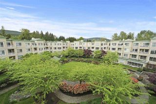 "Photo 10: 427 2995 PRINCESS Crescent in Coquitlam: Canyon Springs Condo for sale in ""Princess Gate"" : MLS®# R2452906"