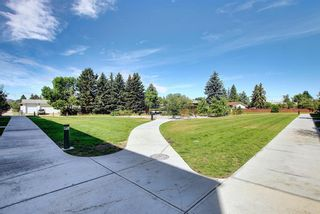 Photo 37: 3543 69 Street NW in Calgary: Bowness Row/Townhouse for sale : MLS®# A1023919