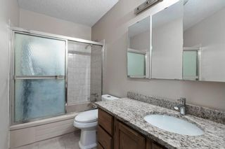 Photo 10: 211 Templewood Road NE in Calgary: Temple Detached for sale : MLS®# A1124451