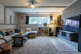Photo 29: 1604 Dogwood Ave in Comox: CV Comox (Town of) House for sale (Comox Valley)  : MLS®# 868745
