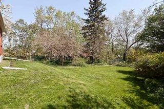 Photo 9: 129 Chine Dr in Toronto: Cliffcrest Freehold for sale (Toronto E08)  : MLS®# E2669488