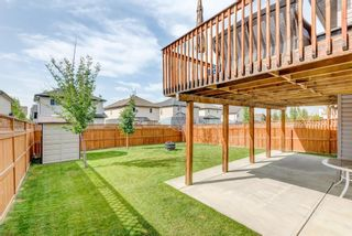 Photo 35: 17 Royal Birch Landing NW in Calgary: Royal Oak Residential for sale : MLS®# A1060735