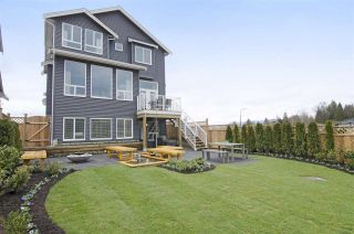 Photo 19: 23831 103A AVENUE in Maple Ridge: Albion House for sale : MLS®# R2155135