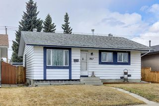 Photo 2: 367 Maitland Crescent NE in Calgary: Marlborough Park Detached for sale : MLS®# A1093291