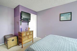 Photo 41: 8616 176 Avenue in Edmonton: Zone 28 House for sale : MLS®# E4248429