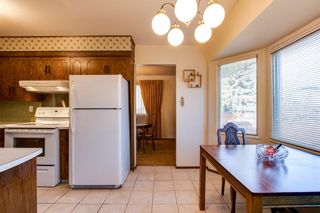 Photo 11: 10424 39A Avenue in Edmonton: Zone 16 House for sale : MLS®# E4264425