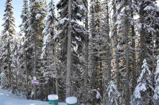 """Photo 5: 210 ALPINE Way in Smithers: Smithers - Rural Land for sale in """"Hudson Bay Mountain Estates"""" (Smithers And Area (Zone 54))  : MLS®# R2453895"""