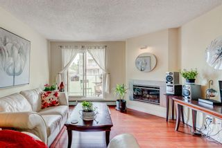 Photo 5: 14 2314 Edenwold Heights NW in Calgary: Edgemont Apartment for sale : MLS®# A1132742