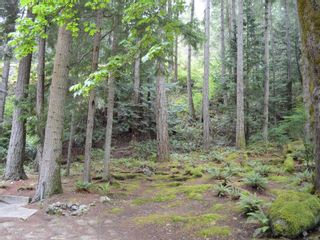 Photo 51: 320 Huck Rd in : Isl Cortes Island House for sale (Islands)  : MLS®# 863187
