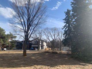 Photo 7: 10611 60 Avenue in Edmonton: Zone 15 Vacant Lot for sale : MLS®# E4236480
