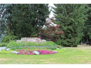 Photo 12: 215 1000 King Albert Avenue in Coquitlam: Central Coquitlam Condo for sale : MLS®# V1135764