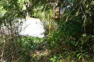Photo 3: Lot 6 SANDY HOOK Road in Sechelt: Sechelt District Land for sale (Sunshine Coast)  : MLS®# R2569863
