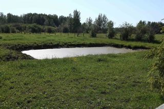Photo 39: 461028 RR 74: Rural Wetaskiwin County House for sale : MLS®# E4252935