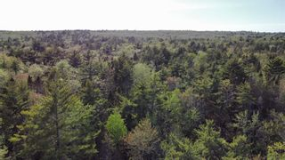 Photo 15: Lot Sandy Point Road in Jordan Ferry: 407-Shelburne County Vacant Land for sale (South Shore)  : MLS®# 202113639
