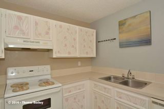 Photo 15: 23 Faldale CLOSE NE in Calgary: Falconridge House for sale : MLS®# C3640726