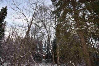"""Photo 20: 3 3000 DAHLIE Road in Smithers: Smithers - Rural Land for sale in """"Mountain Gateway Estates"""" (Smithers And Area (Zone 54))  : MLS®# R2280165"""