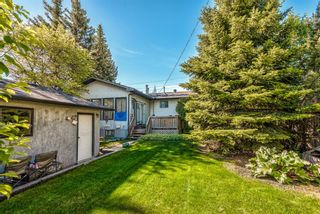 Photo 5: 5836 Silver Ridge Drive NW in Calgary: Silver Springs Detached for sale : MLS®# A1121810