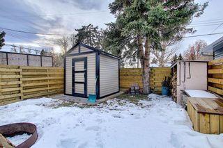 Photo 42: 1614 Saskatchewan Street: Crossfield Detached for sale : MLS®# A1061183