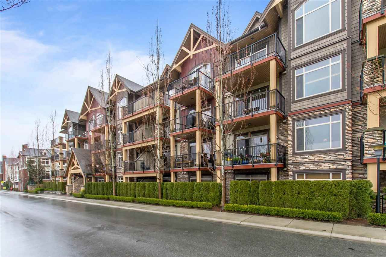 """Main Photo: 217 8328 207A Street in Langley: Willoughby Heights Condo for sale in """"Walnut Ridge 1"""" : MLS®# R2448353"""